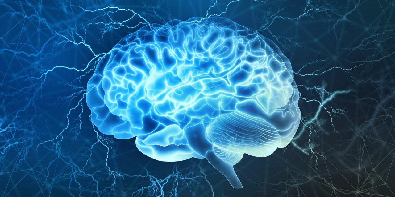 Como utilizar a neurociência em seus conteúdos e garantir ótimos resultados.