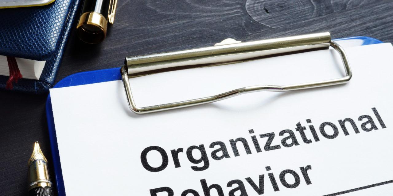 Comportamento organizacional nas empresas: entenda a importância
